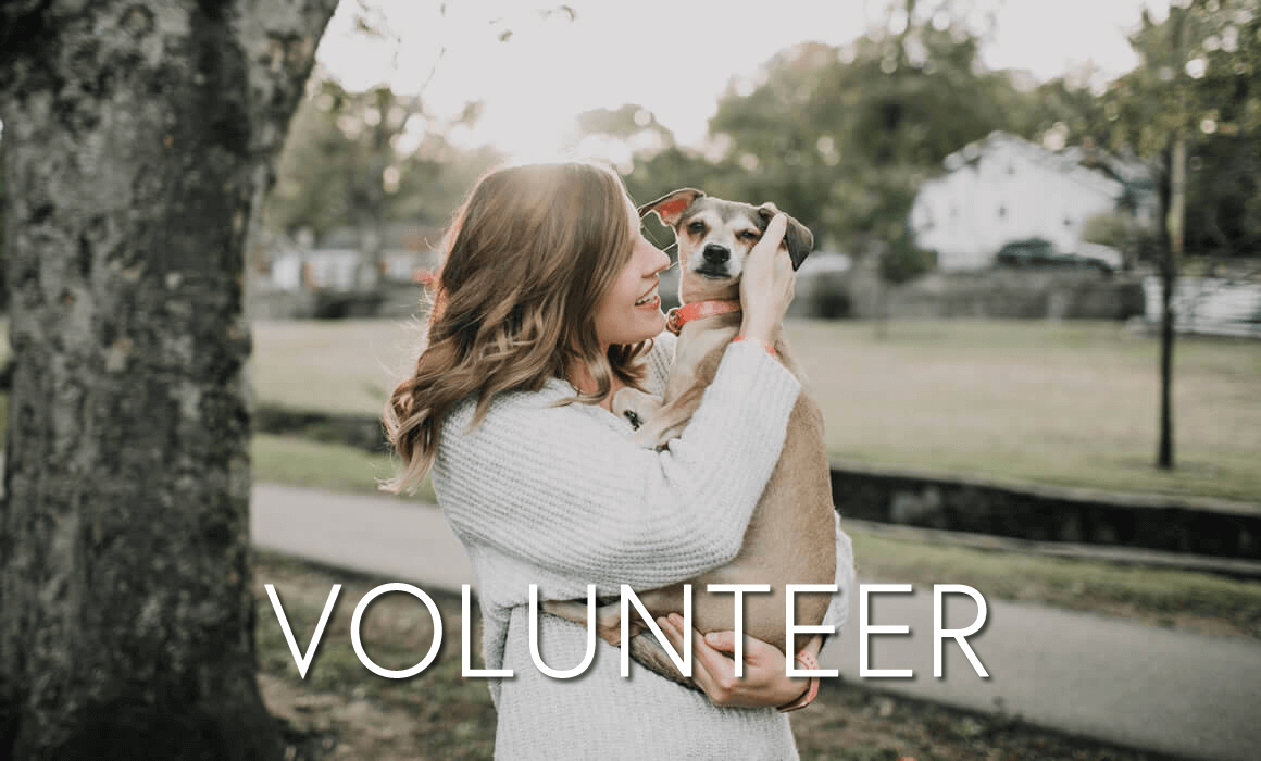 Volunteer with PeTS