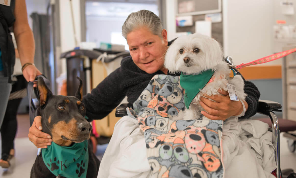 Kane and Abbey, pet therapy dogs